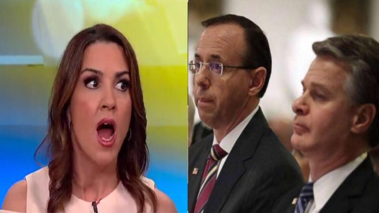 Sara Carter exposed the next Dem trick to stall the Presidential order to release the documents. Photo credit to US4Trump compilation with Video Screen Shot & Breaking News. Info.